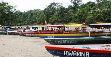 Puerto Misahuallí, Ecuador, hoteles, tours, actividades y turismo