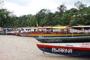 Puerto Misahuallí, Ecuador, qué hacer, tours y actividades para el turista