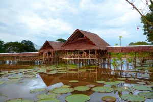 Lecitia Amazonas Colombia Viajes a Leticia