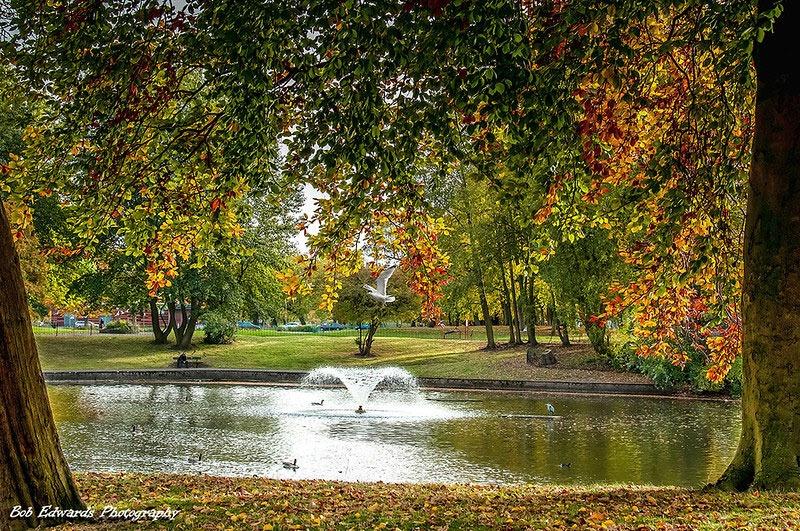 Newsham Park