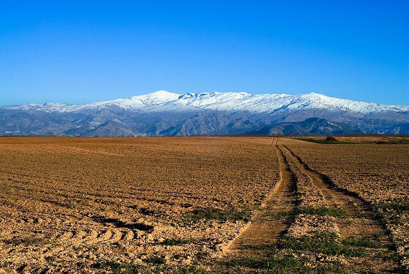 Hacer rutas en bicicleta por Almería y Granada